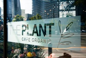 The Plant Cafe Organic-Dogpatch